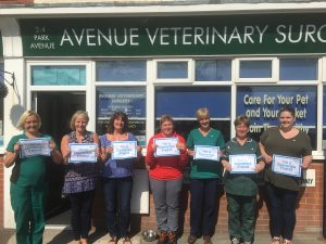 Avenue Veterinary Surgery